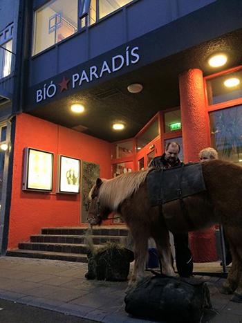 cinéma reykjavik islande